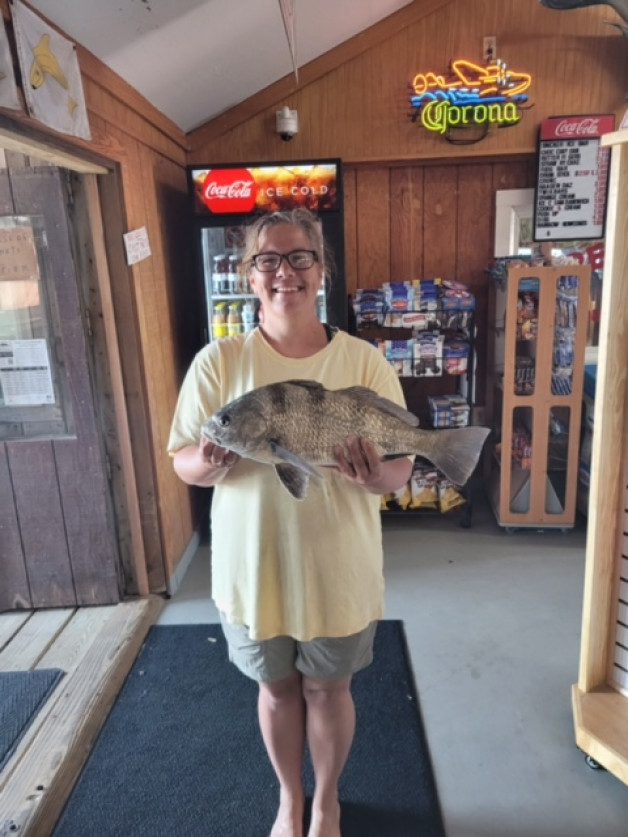 Anglers are catching plenty again today. Look at this beautiful black drum